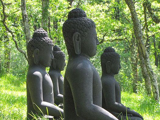 Ritiro Yoga e meditazione in Toscana