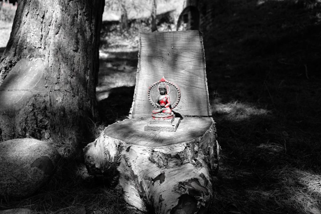 druma-yoga-firenze