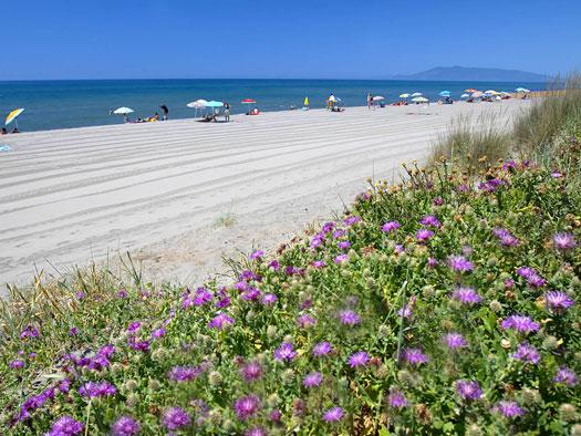 Vacanza Yoga al mare in Toscana